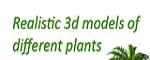 3D Mentor Coupon Codes