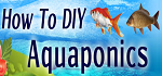 How To DIY Aquaponics Coupon Codes
